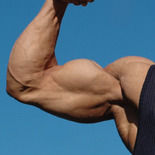 big_arms.jpg