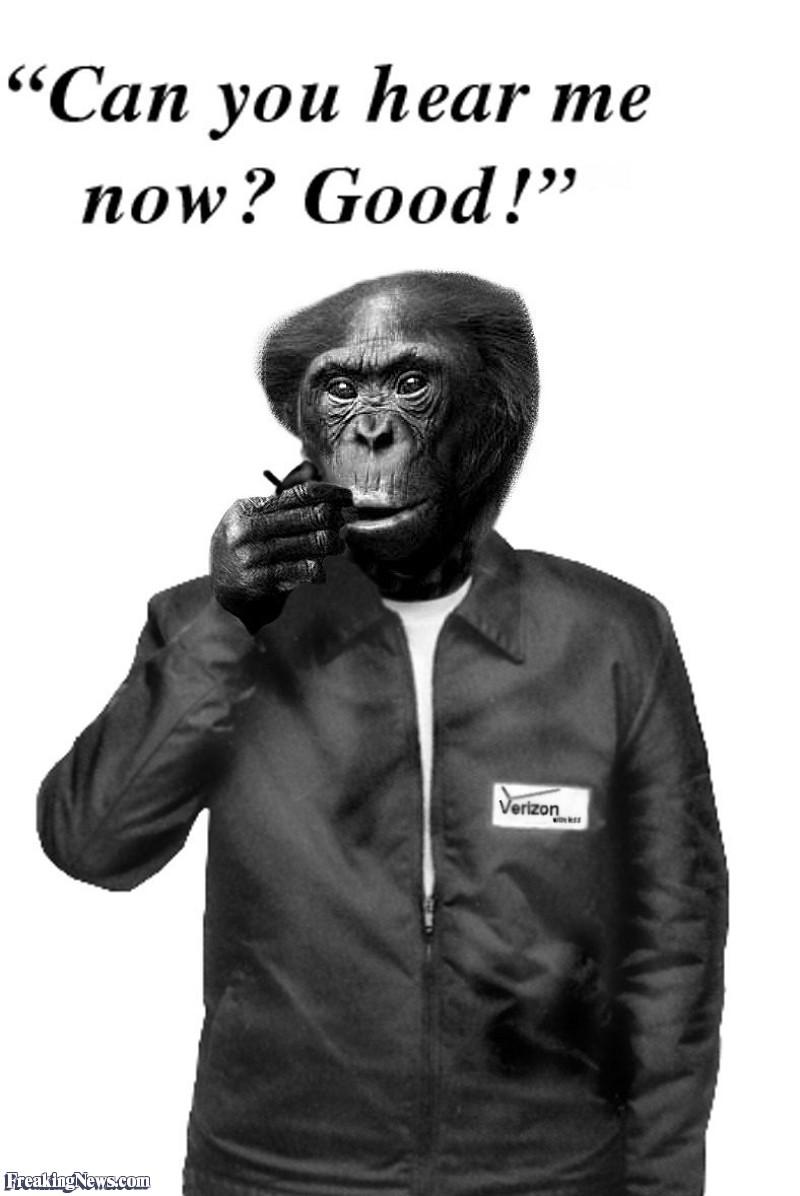 Verizon-Wireless-Monkey--18192.jpg