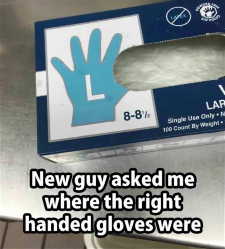 your-gloves.jpg